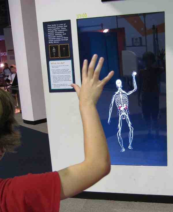 photo of exhibit with interactive skeleton