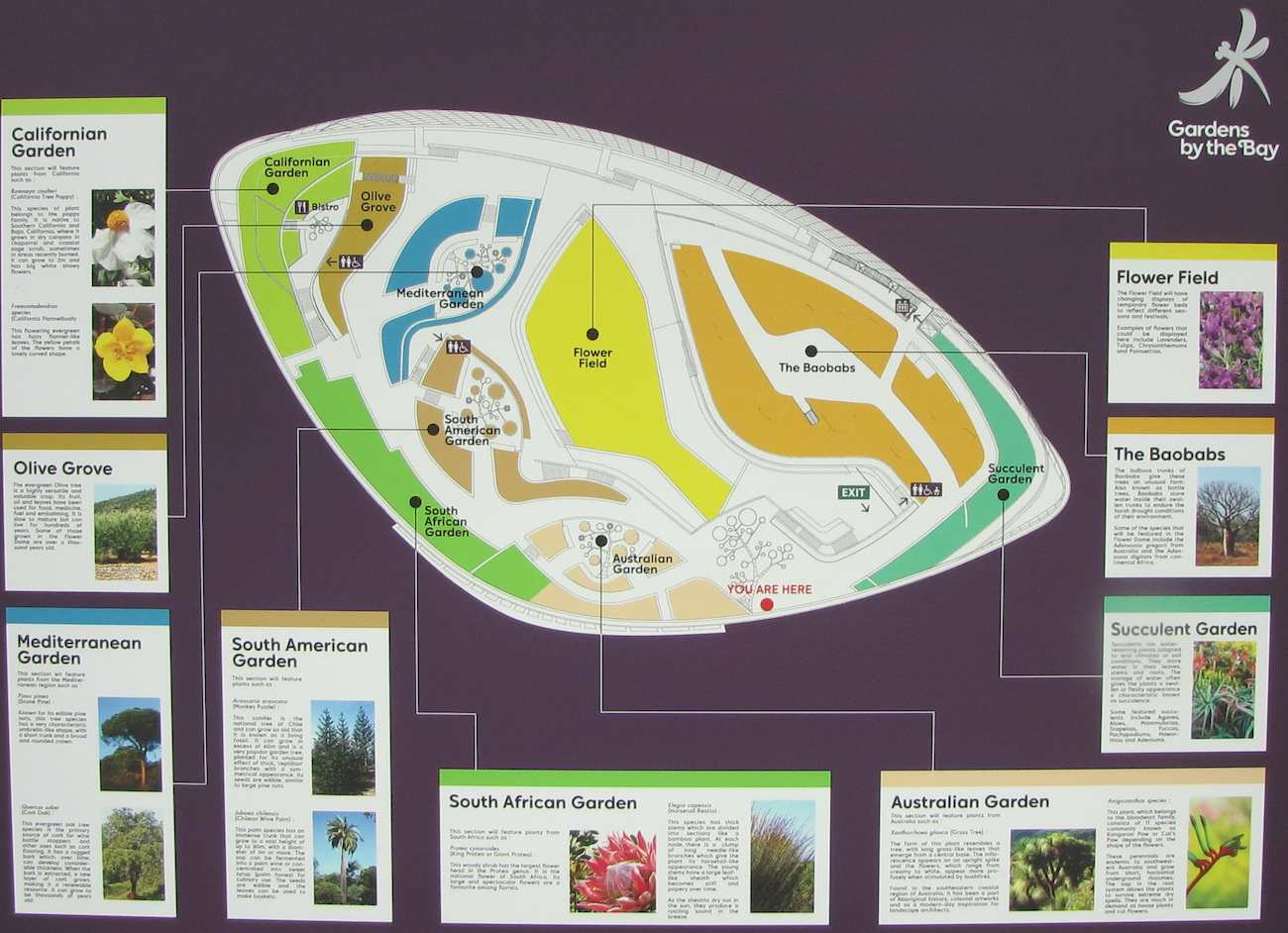 photo of the Flower Dome layout of Gardens by the Bay, Singapore